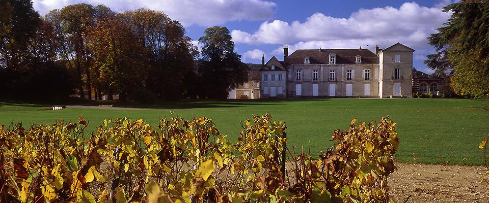 Chateaux-de-Meursault